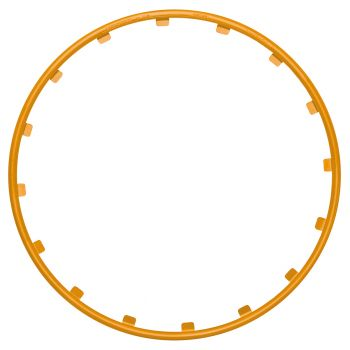 RIM RINGZ 19 Zoll in Orange